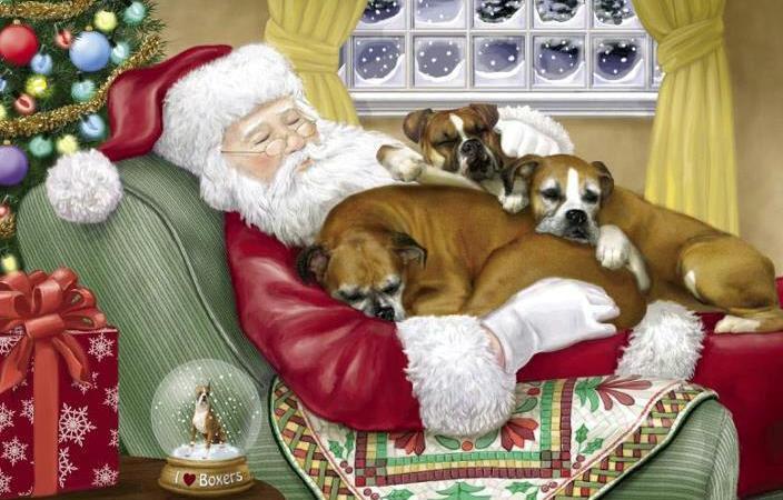 Bildergebnis für frohe weihnachten Hund boxer